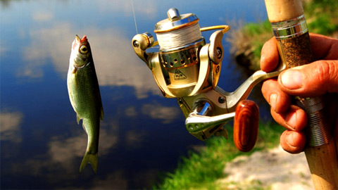 Рыбалка и одежда для рыбаков